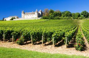 Chateau de Rully s vinicí