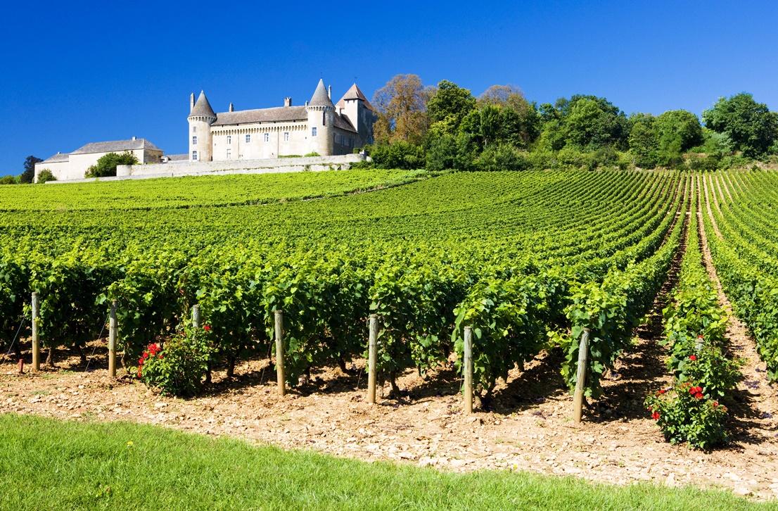 Francouzské víno